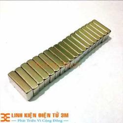 2 cục Nam Châm Đất Hiếm 20x10x2mm