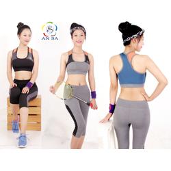 Bộ thể thao nữ cao cấp quần lửng áo bra phối lưới-DL7