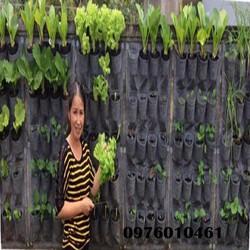 Túi trồng cây