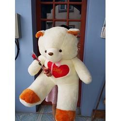 Gấu bông trái tim to gần bằng người