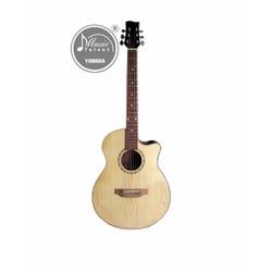 Đàn guitar Acoustic HDJ-100 Tặng kèm bộ dây Acoustic