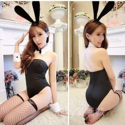 Đồ Cosplay Sexy Thỏ Hư