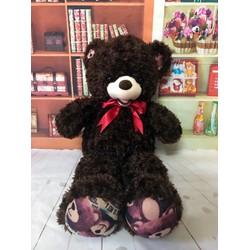 Thú bông gấu bông tai chân thêu gấu 1m4