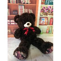 Thú bông gấu bông tai chân thêu gấu 1m1