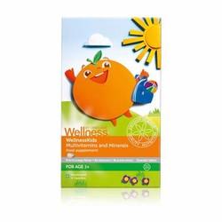 Thực phẩm bảo vệ sức khỏe WellnessKids Multivitamins and Minerals