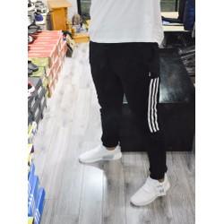 Quần Thể Thao Adidas, quần nam