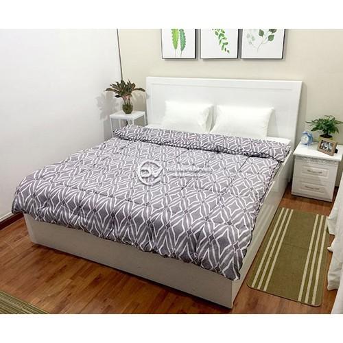 Chăn Phao Mùa Đông Siêu Nhẹ - Cotton Poly 200x220cm