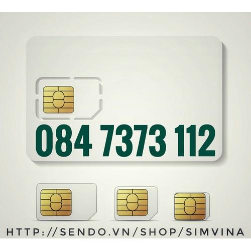 Sim Hotline 84 7373 112