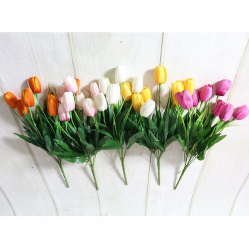 Cành hoa tulip