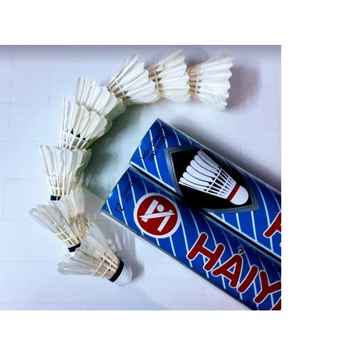 01 ống cầu lông Hải Yến - 12 quả - 5848117 , 12351322 , 15_12351322 , 120000 , 01-ong-cau-long-Hai-Yen-12-qua-15_12351322 , sendo.vn , 01 ống cầu lông Hải Yến - 12 quả
