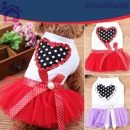 Áo váy cho chó mèo - Phụ kiện thú cưng Hà Nội size XL