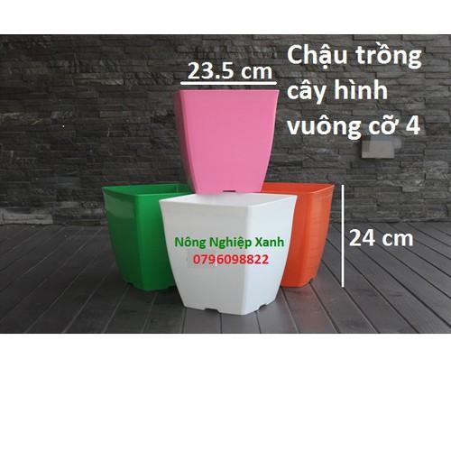 Set 5 chậu nhựa trồng cây cỡ 4 kèm đĩa lót mix 5 màu ngẫu nhiên