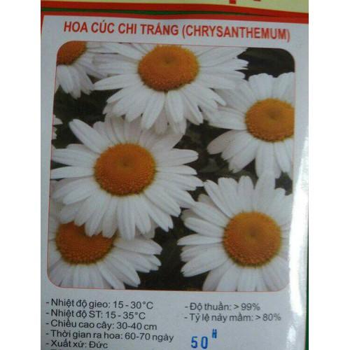 Hạt giống HOA CÚC CHI TRẮNG - 5908928 , 12419745 , 15_12419745 , 17500 , Hat-giong-HOA-CUC-CHI-TRANG-15_12419745 , sendo.vn , Hạt giống HOA CÚC CHI TRẮNG