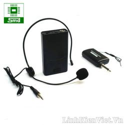 Bộ Micro không dây đeo tai WEISRE