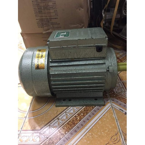 Động cơ điện 2hp-2