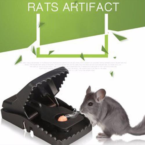 BẪY CHUỘT CAO CẤP RATS ARTIFACT - 6054814 , 12566101 , 15_12566101 , 59000 , BAY-CHUOT-CAO-CAP-RATS-ARTIFACT-15_12566101 , sendo.vn , BẪY CHUỘT CAO CẤP RATS ARTIFACT