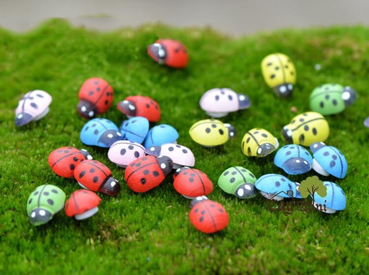 Phụ kiện tiểu cảnh - bọ rùa đủ màu 10 con