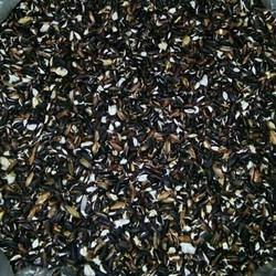 1kg trà gạo nếp cẩm rang chữa viêm khớp