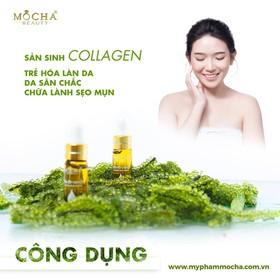 Kem Face Collagen Tảo Non Trị nám MOCHA tặng serum rong nho 345k - KFTNTN MOCHA TẶNG SERUM-4