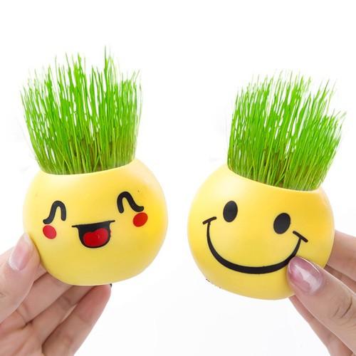 Combo 4 Chậu trồng cây mini - chậu trồng cây cảm xúc có hạt giống - 5704271 , 12151389 , 15_12151389 , 99000 , Combo-4-Chau-trong-cay-mini-chau-trong-cay-cam-xuc-co-hat-giong-15_12151389 , sendo.vn , Combo 4 Chậu trồng cây mini - chậu trồng cây cảm xúc có hạt giống