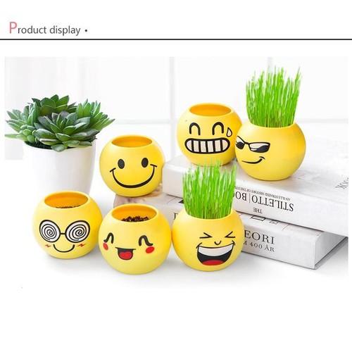 Combo 5 bộ chậu trồng cây mini - chậu trồng cây cảm xúc có hạt giống - 6956984 , 13695868 , 15_13695868 , 150000 , Combo-5-bo-chau-trong-cay-mini-chau-trong-cay-cam-xuc-co-hat-giong-15_13695868 , sendo.vn , Combo 5 bộ chậu trồng cây mini - chậu trồng cây cảm xúc có hạt giống