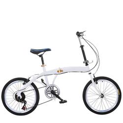 Xe đạp xếp gọn Folding bike STEOD 4S chất liệu cao cấp