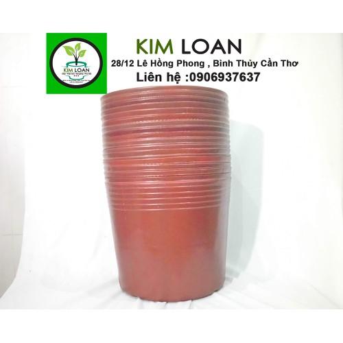 Combo 50 chậu nhựa mềm C10 màu đỏ 25x20cm