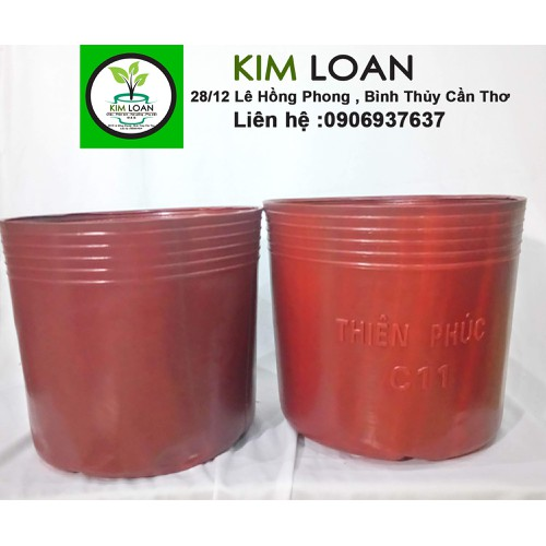 Combo 50 chậu nhựa mềm C11 màu đỏ 27x23cm