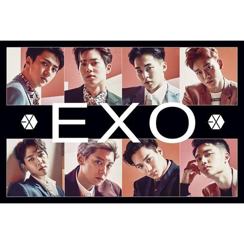 Poster EXO 8 tấm 29x49