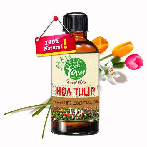 Tinh Dầu Hoa Tulip Nhập Khẩu 100ml