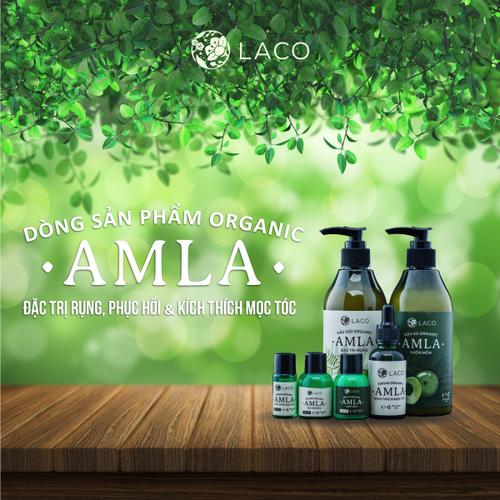 Combo Dầu gội thảo dược trị rụng tóc AMLA tặng Son sáp dưỡng môi 75k - 6373589 , 12984774 , 15_12984774 , 590000 , Combo-Dau-goi-thao-duoc-tri-rung-toc-AMLA-tang-Son-sap-duong-moi-75k-15_12984774 , sendo.vn , Combo Dầu gội thảo dược trị rụng tóc AMLA tặng Son sáp dưỡng môi 75k