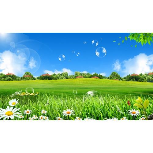 tranh phong cảnh thiên nhiên- gạch tranh 3d - 6372548 , 12983149 , 15_12983149 , 1190000 , tranh-phong-canh-thien-nhien-gach-tranh-3d-15_12983149 , sendo.vn , tranh phong cảnh thiên nhiên- gạch tranh 3d