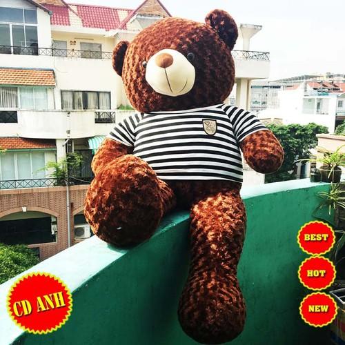 GẤU BÔNG TEDDY GIÁ RẺ - TEDDY 1M2
