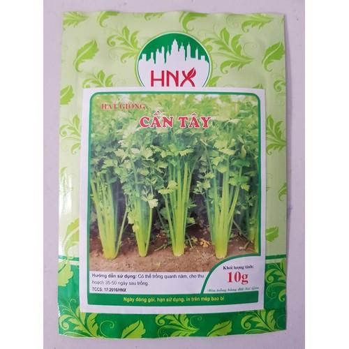 hạt giống rau cần tây - 6477964 , 13113041 , 15_13113041 , 15000 , hat-giong-rau-can-tay-15_13113041 , sendo.vn , hạt giống rau cần tây