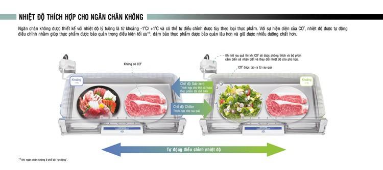 Tủ lạnh Hitachi R G570GV XT 589 lít 2