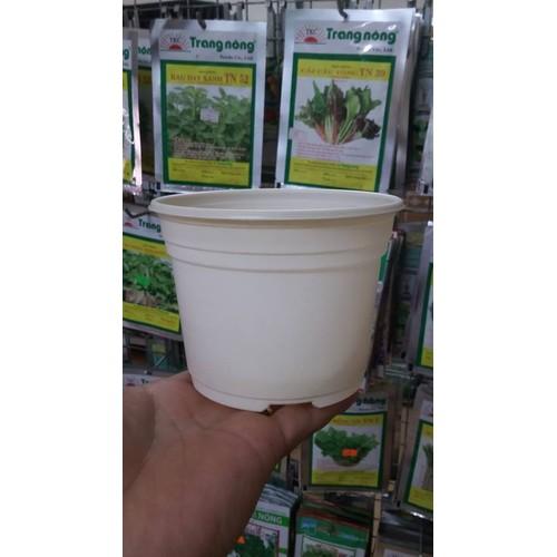 10 Chậu nhựa mỏng trồng cây TTK105