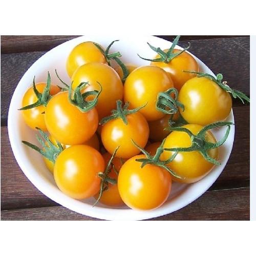 Hạt giống cà chua bi vàng