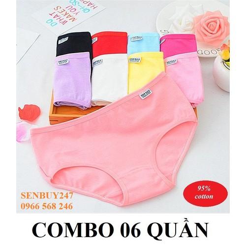 Bộ 06 quần lót nữ cotton xuất mỹ