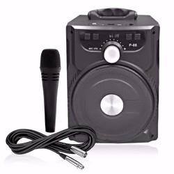 Loa p88 CHÍNH HÃNG  bluetooh karaoke mini  tặng 1 mic