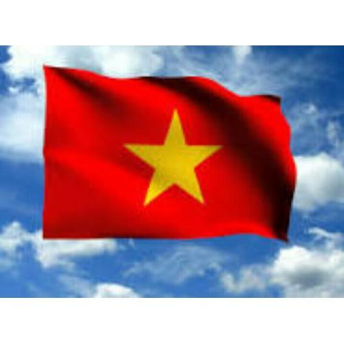 Si 10 lá cờ Tổ Quốc - 4471937 , 13294708 , 15_13294708 , 139000 , Si-10-la-co-To-Quoc-15_13294708 , sendo.vn , Si 10 lá cờ Tổ Quốc