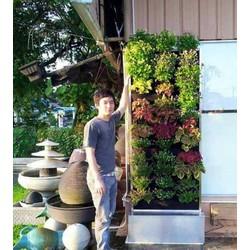 túi trồng cây treo tường 20 ô