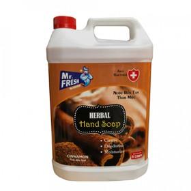 Nước rửa tay tiệt trùng Premium Hand Soap Mr Fresh Hàn Quốc 5L Hương Quế - BH458-2