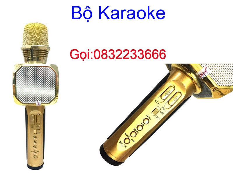 Micro Bluetooth Kèm Loa Hát Karaoke 1