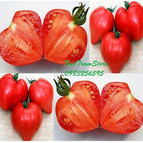 Hạt giống cà chua trái tim F1 gói 30 hạt xuất xứ Đức