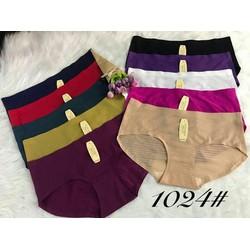 chuyên sỉ: 10 quần lót nữ đúc thông hơi co giãn 4 chiều , chất mát