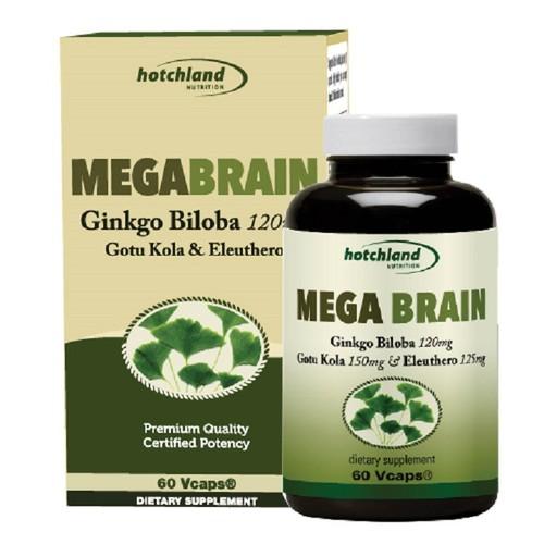 Mega Brain - Tuần hoàn máu não