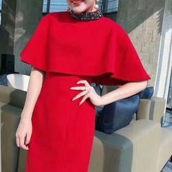 SV58397_ Set váy siêu xinh _ Hàng nhập