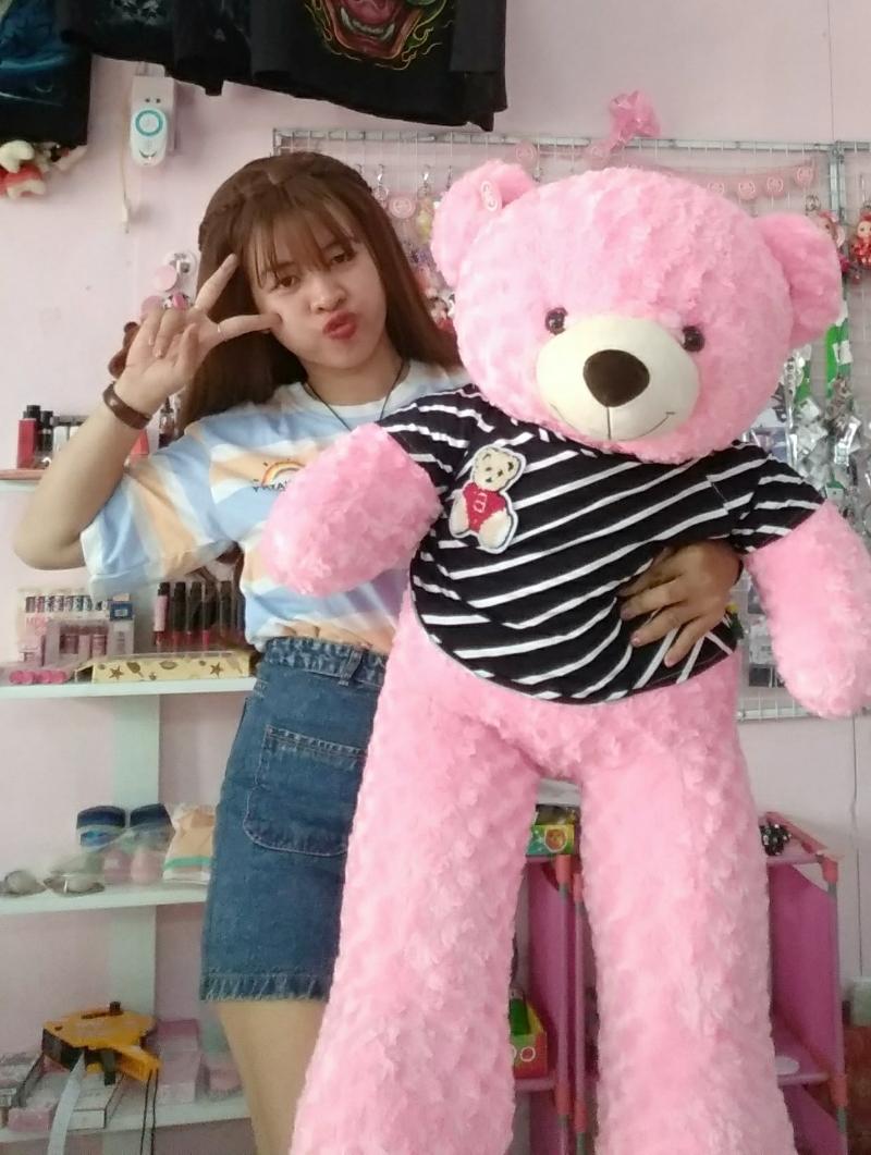 Gấu Bông Teddy Màu Hồng 1m2 3