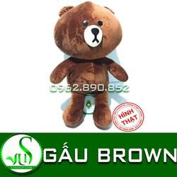 Gấu bông gấu Brown 90cm nhồi bông siêu mịn
