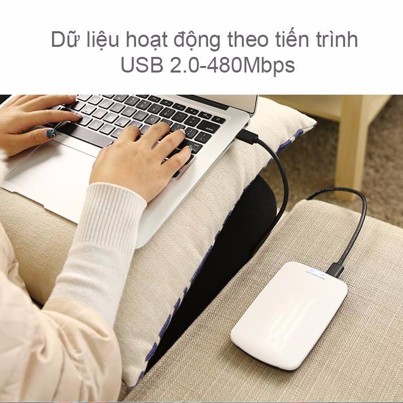 Cáp USB 2 đầu dương  25cm UGREEN 10307 3